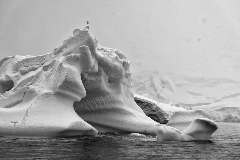 Antarctica-1028-Edit.jpg