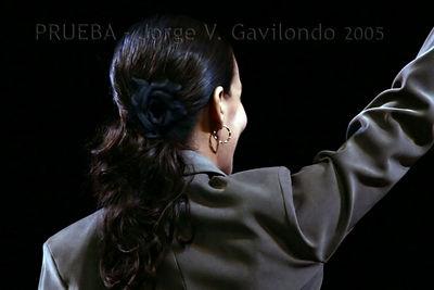 Ballet de Lizt  Alfonso - Variety performance 13-11-2005