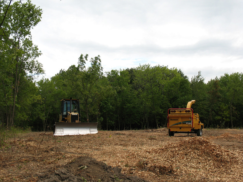Heavy equipment clears small trees and brush from a large area near the trailhead; most of this vegetation was non-native.