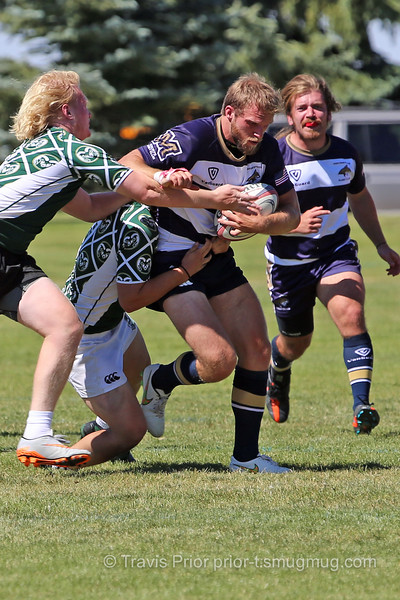 Montana State Rugby I1252460 2015 Jackalope Rugby Tournament.jpg