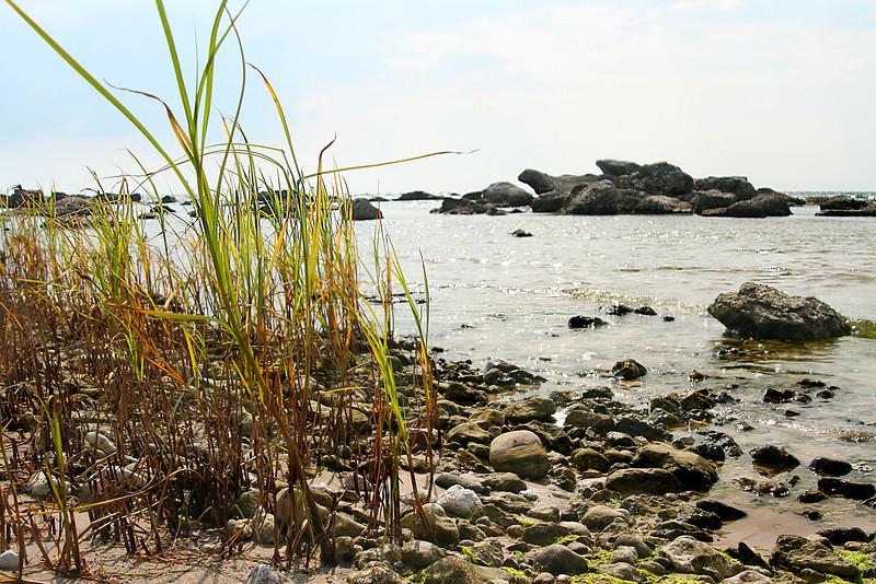 Gotland 20110608_0077.jpg