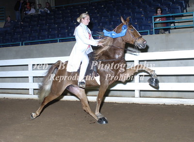 CLASS 36  THREE YR OLD AMATEUR  MARES & GELDINGS