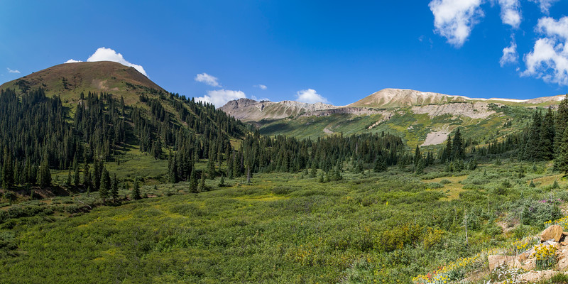 Independence Pass in Summer