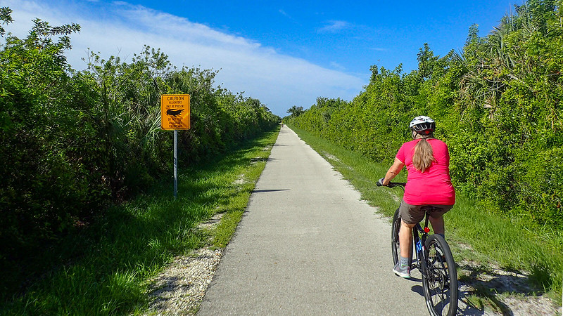 Cape Haze Pioneer Trail