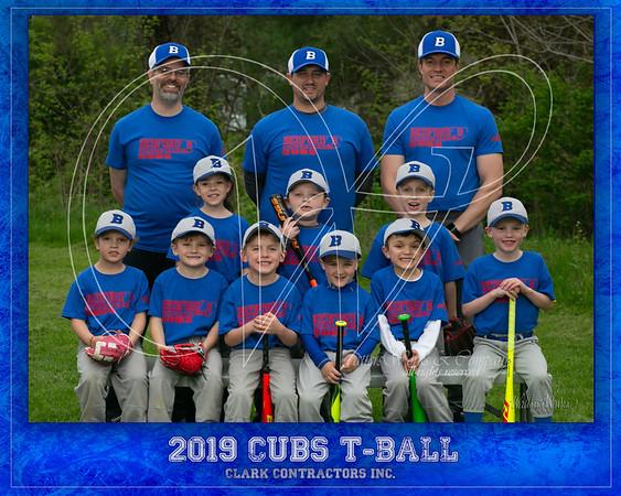 Clark TBall Cubs