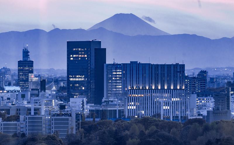 Tokyo-300513.jpg