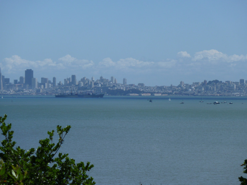 San Francisco From Tiburon Audubon