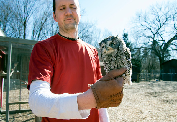 02/21/20 Wesley Bunnell | StaffrrEducation coordinator the Hungerford Nature Center Adam Marzi holds Blinky the Eastern Screech Owl on Friday afternoon. As part of on going renovations the center is building new habitats for their raptors which triple the size the birds currently live in.