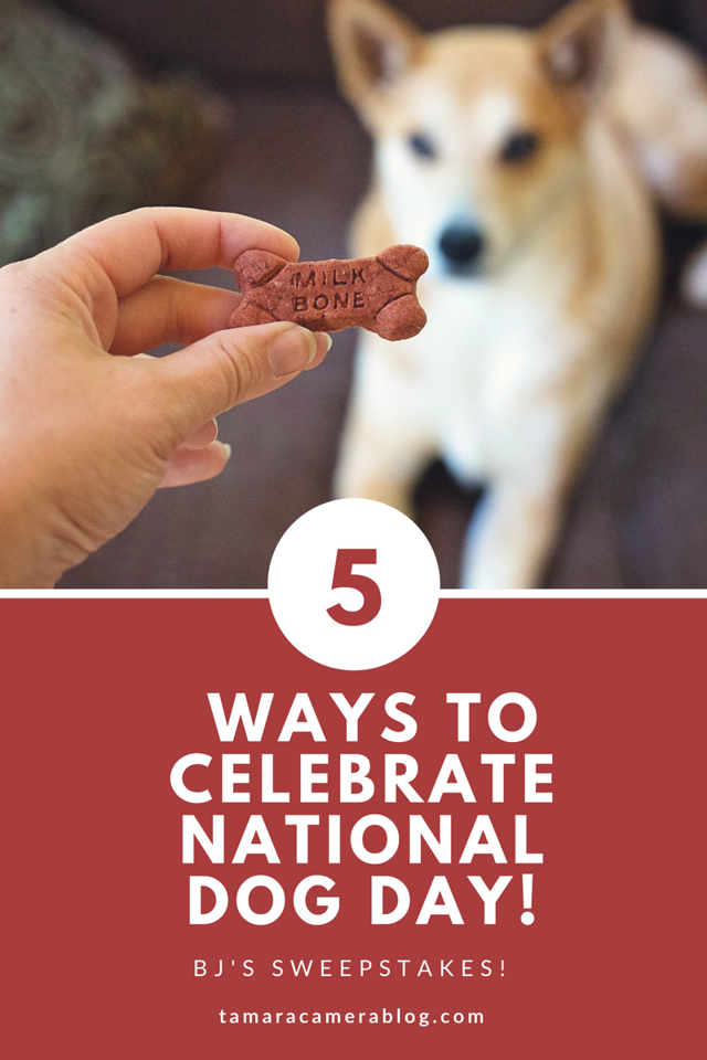 National Dog Day! Purchase a pet item at a BJ's club or BJs.com fr July 8 to August 18 to be entered for a chance to win the grand prize! #ad #BJsSmartSaver