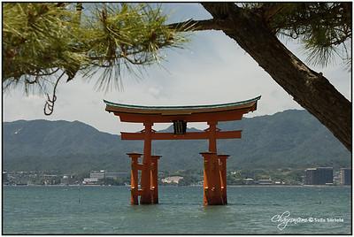 Japan 2007 MIYAJIMA