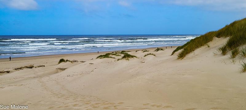 04-22-2021  Part 2 Nehalem Beach-2.jpg