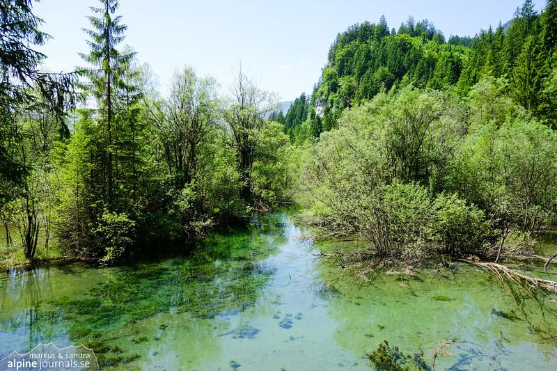 Unusual water landscape near the river Lech