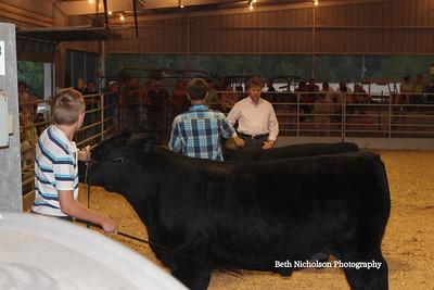 2011 Wash. Co. 4-H Fair (4-H night & beef)