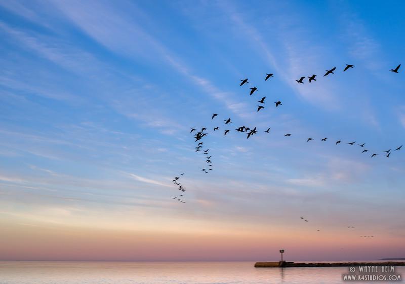 Over Flight   Photography by Wayne Heim