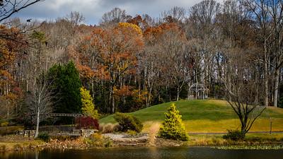 Meadowlark in November