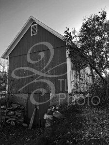 black and white barn