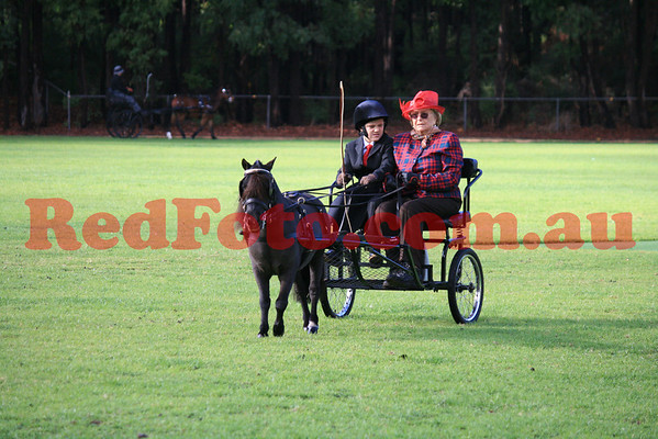 WAHDS Classic Carriage Driving Show Karragullen