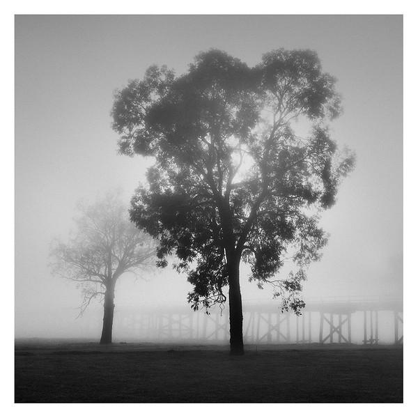 Australia059.jpg