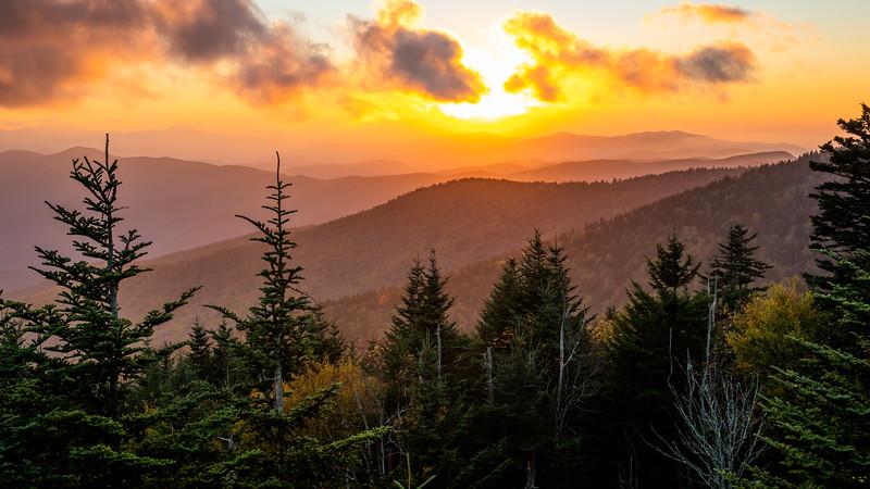 WVWS_Clingmans Dome Smoky Mountain National Park-8328.jpg