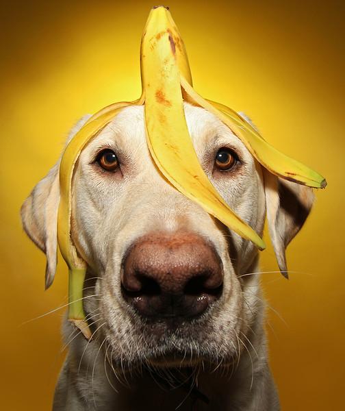 Banana Hat.jpg