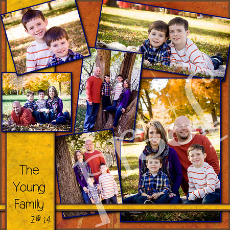 Young family 2014