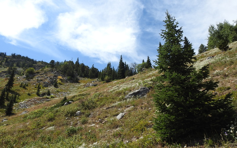 Hessie Trail to Lost Lake 2019 (123).JPG