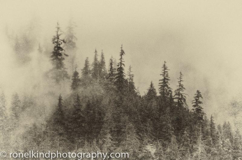 Alaska-0236.jpg