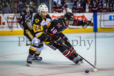 Niagara ICEDOGS vs Hamilton Bulldogs