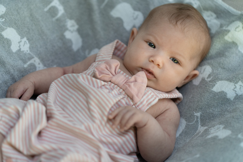 Mikayla 6-weeks 03187 by Art M Altman 2018-Aug.jpg