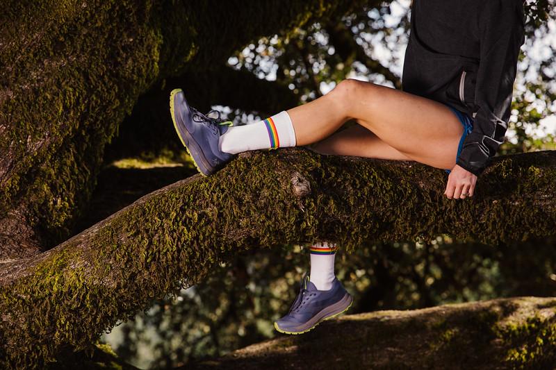 DT_redwoods_Jussioksanen_edited-2662.jpg