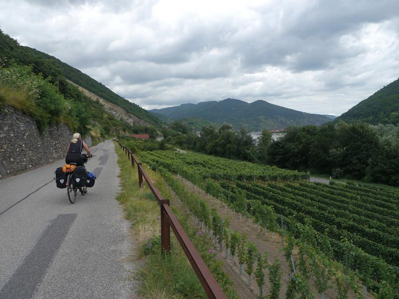 @RobAng 2013 / Schwallenbach, Schwallenbach, Niederösterreich, AUT, Österreich, 210 m ü/M, 31/07/2013 13:45:05