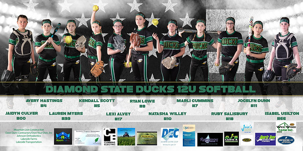 Ducks Banner 2021