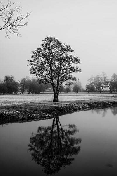 A frosty start (6 of 20).jpg