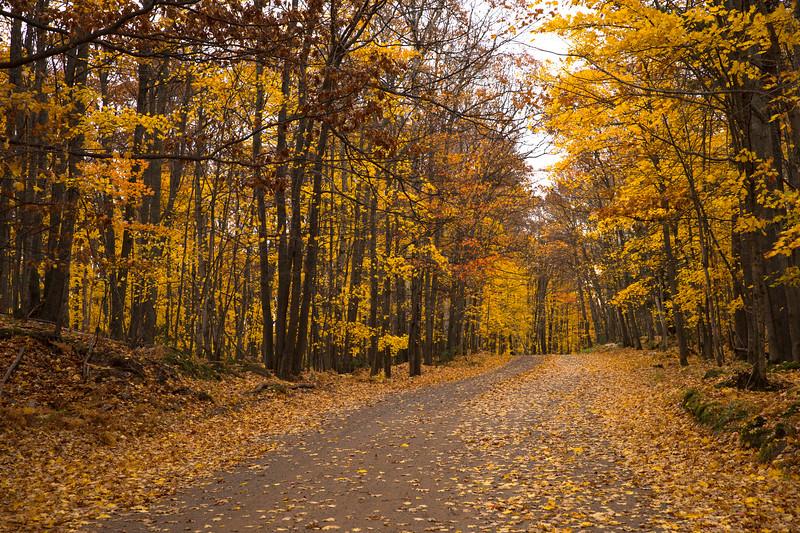 Fall in Negaunee