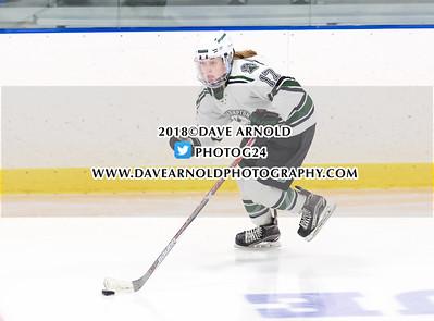 2/3/2018 - Girls Varsity Hockey - New Hampton vs Andover