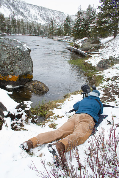 Ryan photographing shooting Harlequin Ducks Madison River Yellowstone National Park WY IMG_0206.jpg