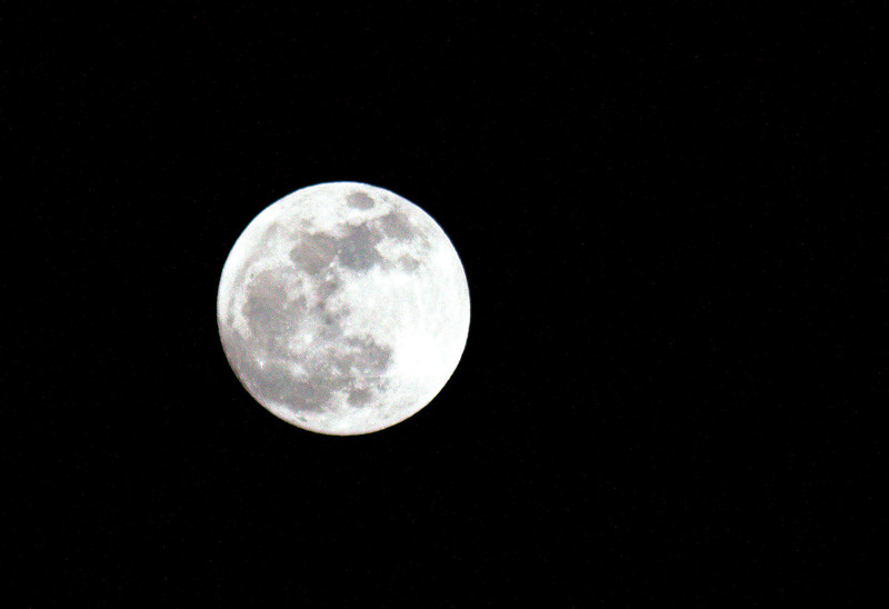 jan 29 moon! 016.jpg