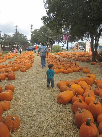 Pumpkin Patch 10/14/12