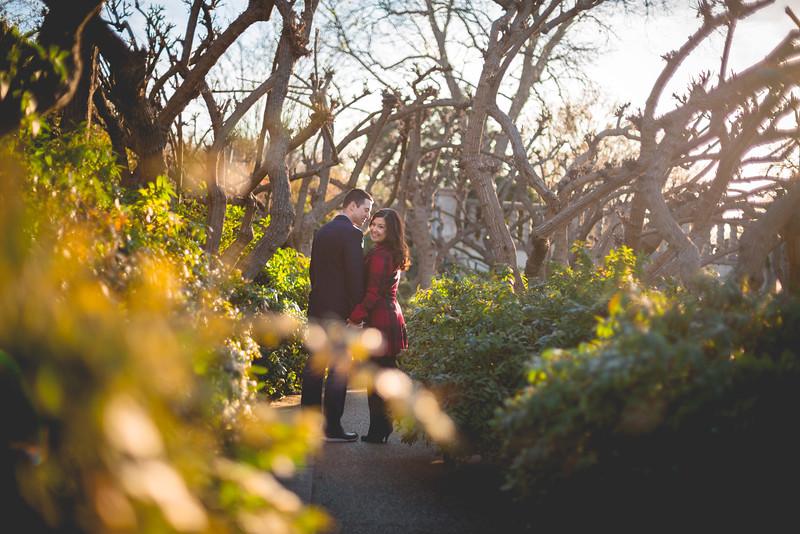 2015-01-09-Dallas Arboretum Engagement Photos Print-18.jpg