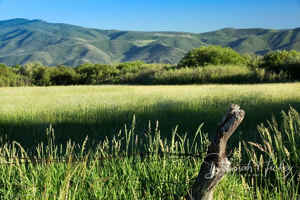 Utah Landscape Collection
