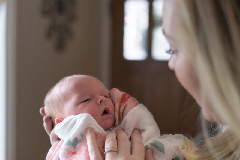 Newborns 03-25-2018-15.jpg