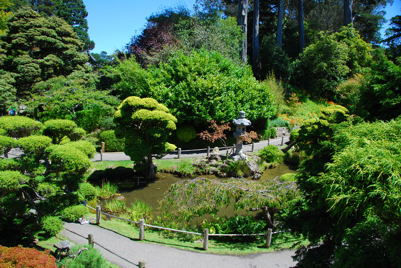 More of the Japanese Tea Gardens.