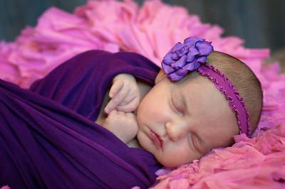Baby Civish
