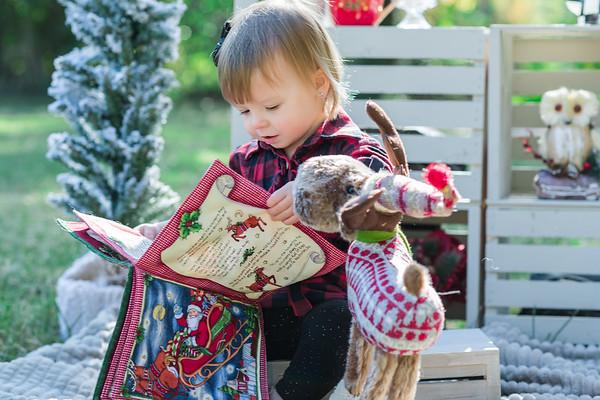 Burke Family Christmas Blog