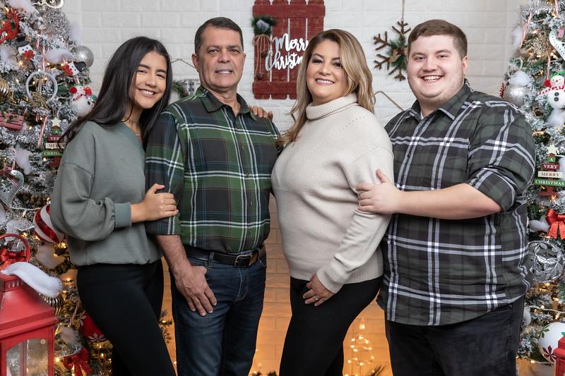 12.18.19 - Vanessa's Christmas Photo Session 2019 - 18.jpg