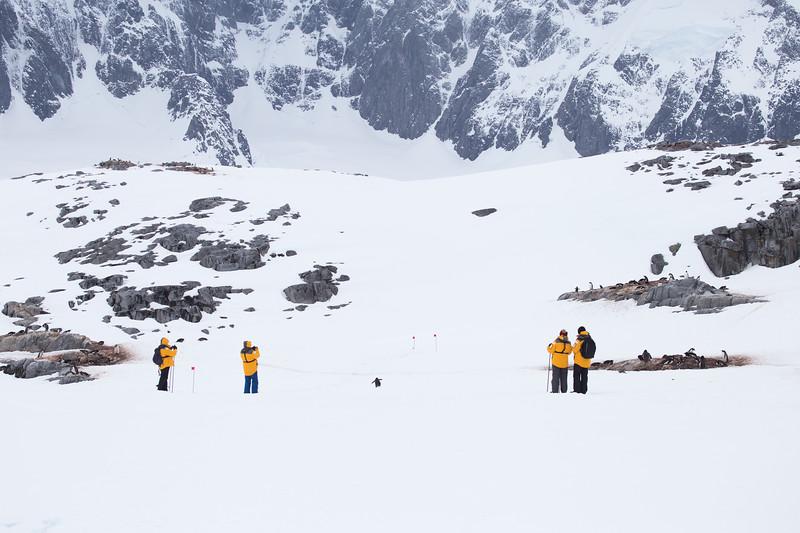 How to Visit Antarctica Responsibly: Antarctica Tourism Deep Dive
