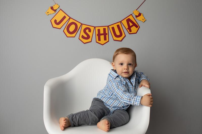 Joshua is ONE-30.jpg
