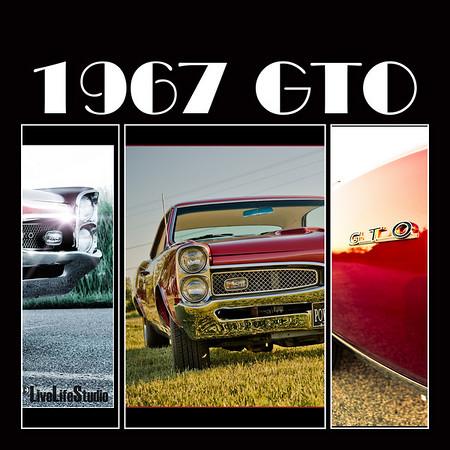 Harry Cline's 67 GTO PhotoShoot