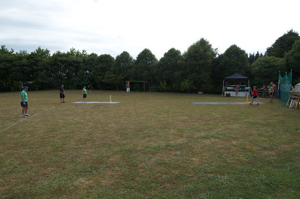 Ferguson Cricket Day 2014
