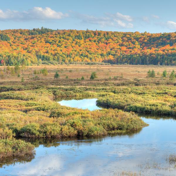 Marsh Lake.jpg
